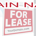 The wave of the future: domain names for lease.