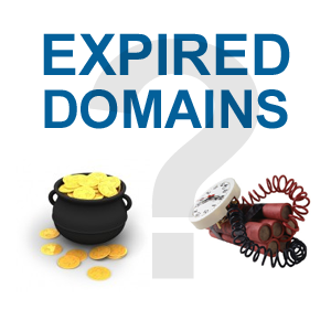 pros and cons of using expired domains for SEO.