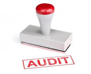 DIY SEO Audit Services
