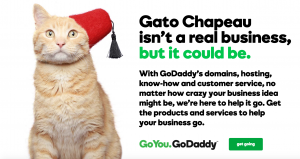 GoDaddy's Cats With Hats Campaign