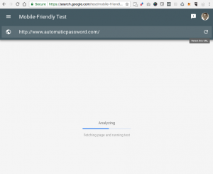Fetching and Analyzing Mobile Friendliness of AutomaticPassword.com