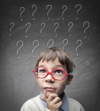 domain questions