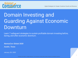 Domain Investing and Guarding Against Economic Downturn